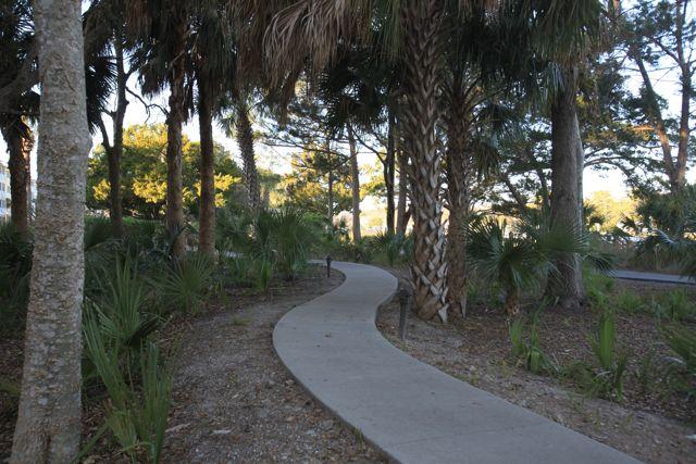 Canopy Walk Cinnamon Beach Realty